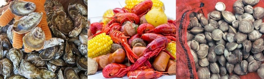 2018 Cultured Seafood Festival March 9 In New Bern North