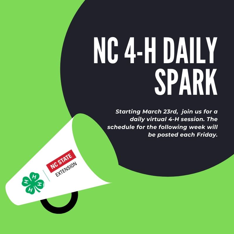 NC 4-H Daily Spark flyer image