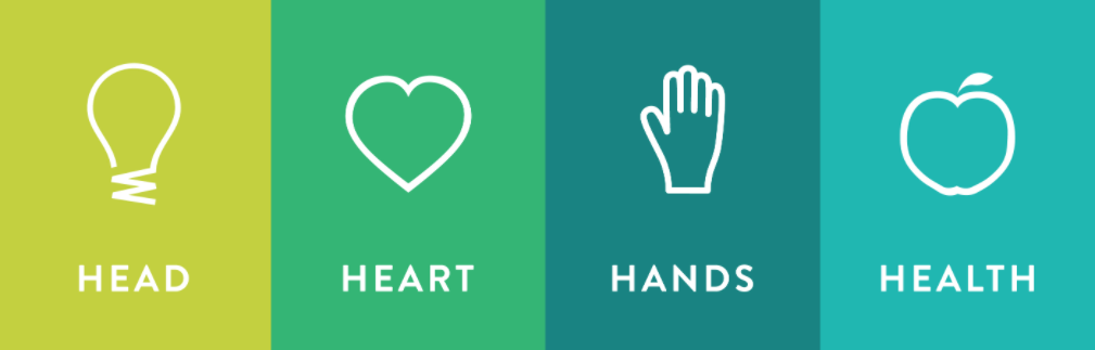 Head, Heart, Hands and Health