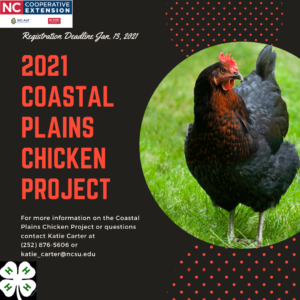 Cover photo for 2021 Coastal Plains Chicken Project
