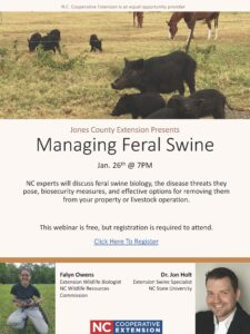 Cover photo for Managing Feral Swine Zoom