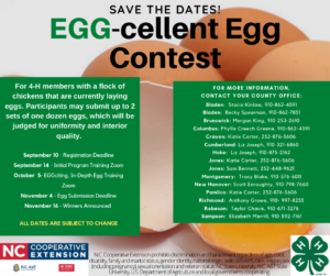 Cover photo for Egg-Cellenct Egg Contest