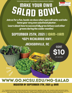 Cover photo for Make Your Own Salad Bowl (Fall Garden Festival 2021)