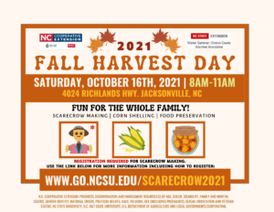 Cover photo for Fall Harvest Day + Scarecrow Making Workshop