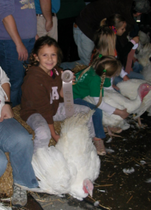 Cover photo for Preparing Your Turkey for the Youth Market Turkey Show